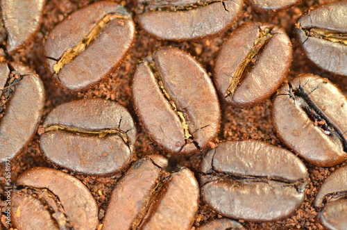 Papiers peints Café en grains ziarna kawy