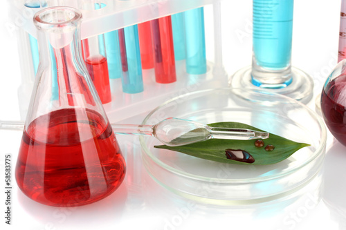 Test-tubes and green leaf tested in petri dish, isolated