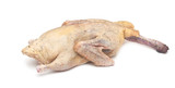 Raw duck on a white background