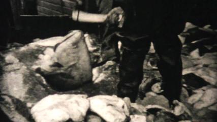 Fresh Catch Of Alaskan Halibut-1940 Vintage 8mm film