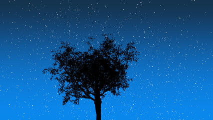 Stars Behind Tree