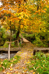 Autumn scene with a bridge and leaves