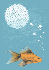 Fish in Water