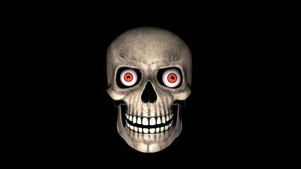 skull fun