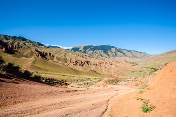 Panarama roads and grasslands and animals