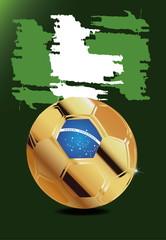 in Soccer WM Brazil 2014