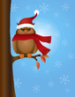 Great Horned Owl with Santa Hat on Tree Vector Illustration