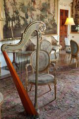 Harp - classical musical instrument harp