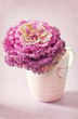 Decorative cabbage flower in a cup with a heart.