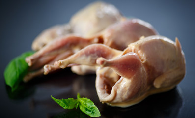 raw quail