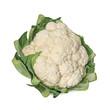 choux-fleurs blanc et vert