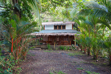Tropical home with exotic vegetation