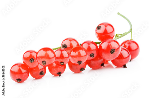 Closeup of red currants isolated on white background