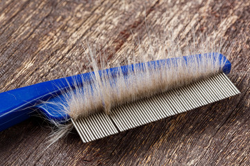 Fur on cat comb