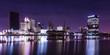 City Lights Skyline