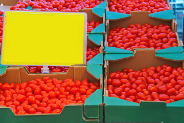 Sale of tomato on the Dutch market