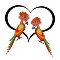 A couple of macaw parrots with a heart