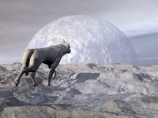Wolf in winter - 3D render