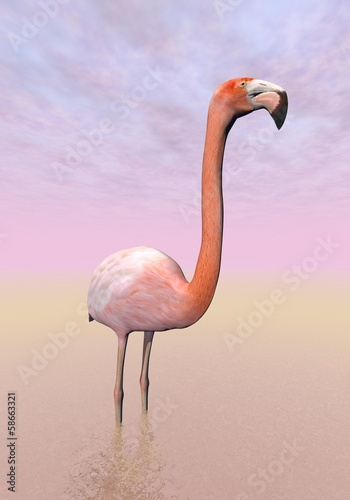 Flamingo - 3D render