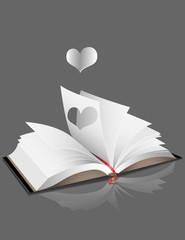 livre ouvert02