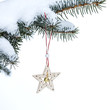 Christmas fir tree with star