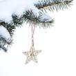 Christmas fir tree with star