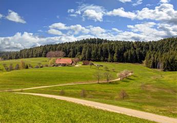 einsamer Bauernhof im Schwarzwald