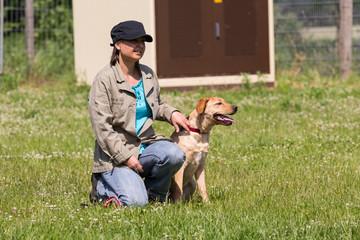 Teilnehmer einer Hundeschule blicken aufmerksam nach vorn