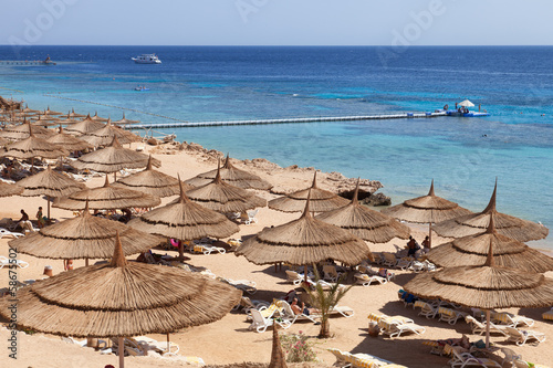 red sea beach resort