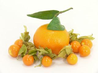 mandarine und physalis