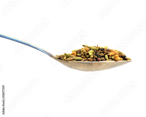 Spoon of Punchpooran