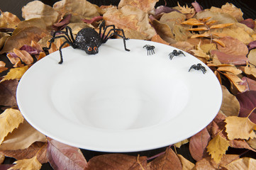 Halloween Spiders on an Empty Dish