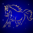 Vector Sketch of Horse in the Sky with Stars