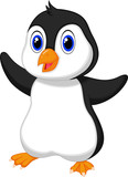Cute baby penguin cartoon