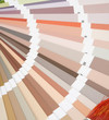 Close-up of a color palette on white background.