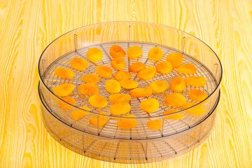 Food dryer with Dried Apricots on a table