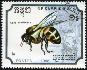 stamp printed in the Republic of Kampuchea, shows the bee