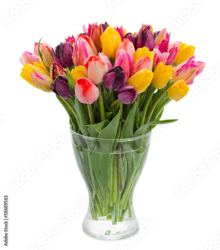 fresh tulips in vase