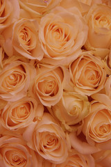 Orange rose bridal arrangement