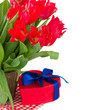 spring red tulips with gift box
