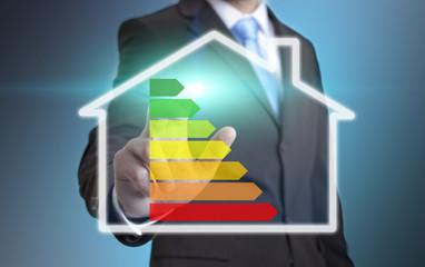 Businessman eco house