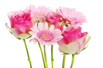 A bouquet of pink gerbera flowers and roses.