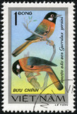 stamp printed in Vietnam shows Garrulax yersini
