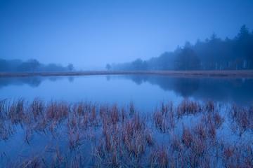 wild lake in misty dusk
