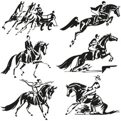 Equestrian olympics 3