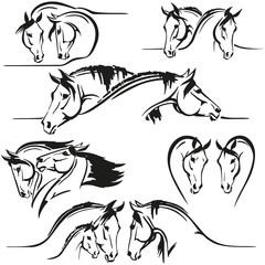 horses heads