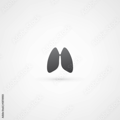 Lungs - vector illustration