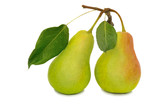 Two large pears on a white background