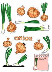 set doodle onions background