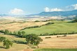Tuscany summer landscape